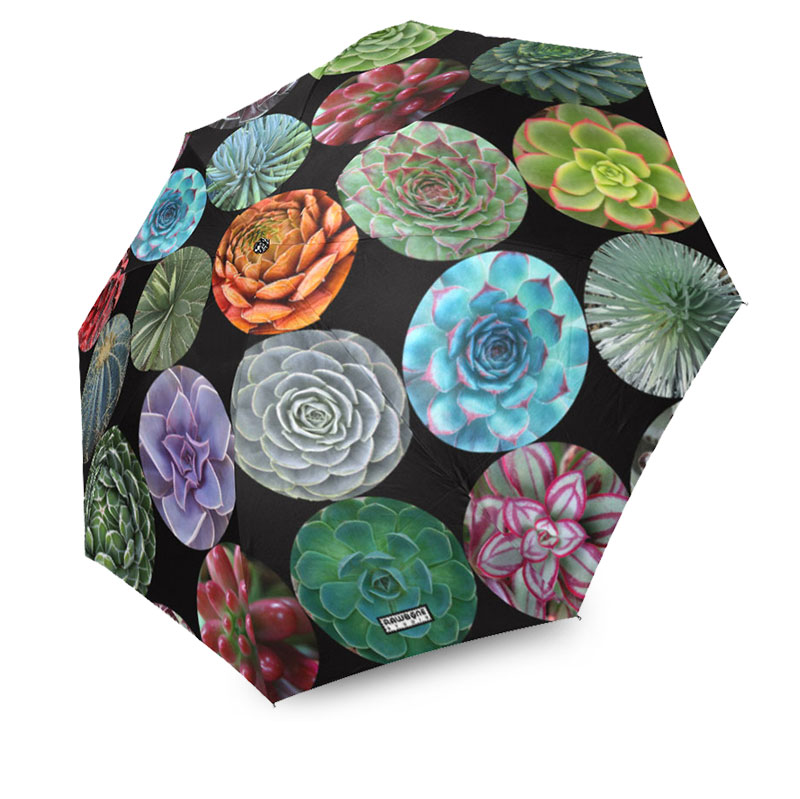 photographic succulents umbrella